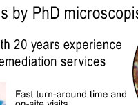 Independent Analyst with 20 years Experience